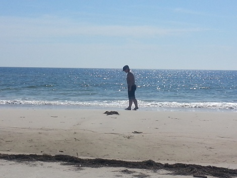 A gratuitous picture of me at the beach last week, because oceans and poetry seem to go together.